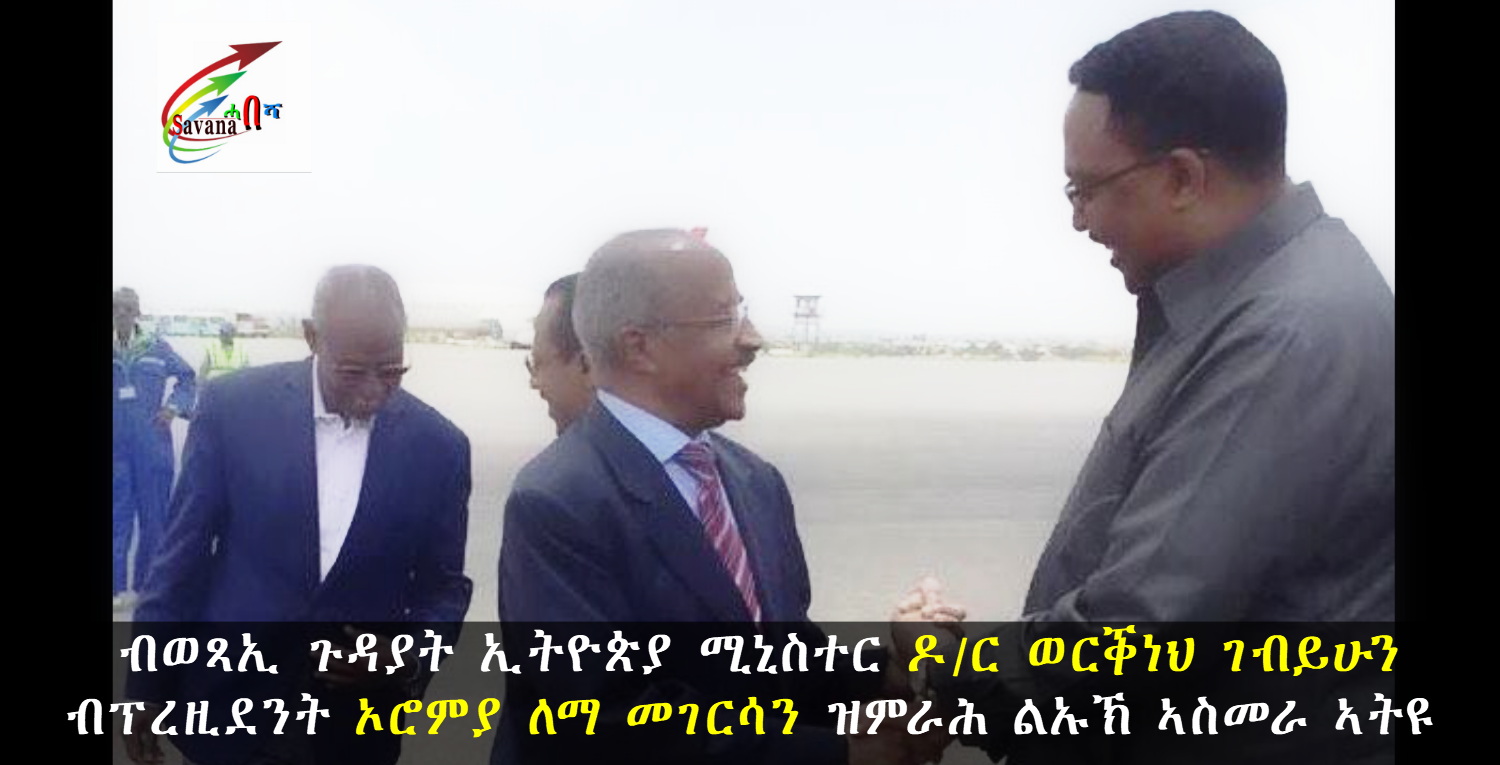 An Ethiopian delegation led by Minister of Foreign Affairs