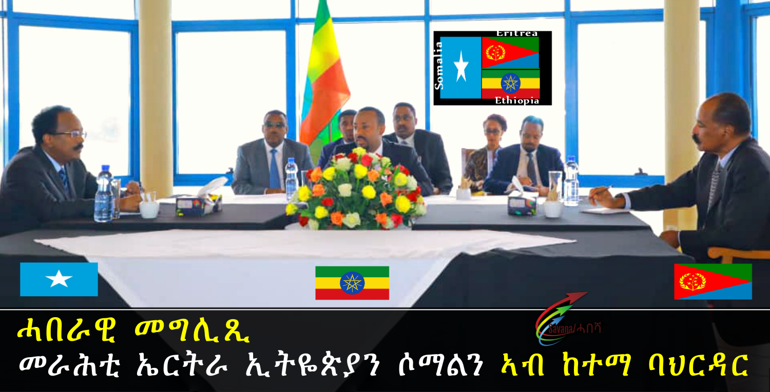 Joint Statement of the Bahr Dar Meeting Between the leaders of