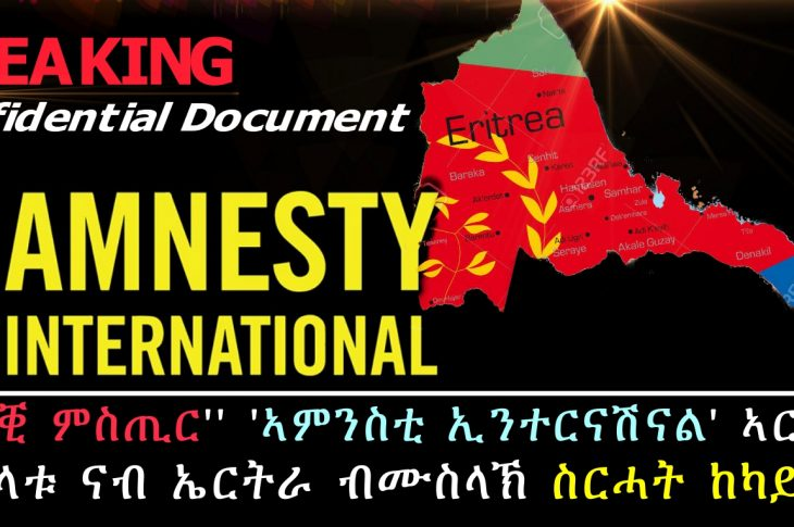 Acts of unwarranted hostility perpetrated against Eritrea