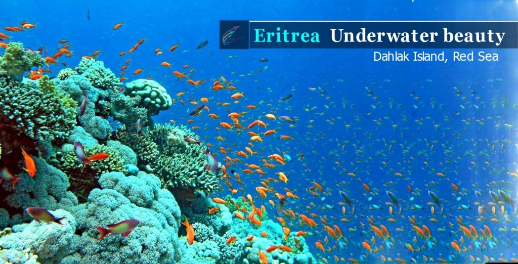 Eritrea Training on tourism resources