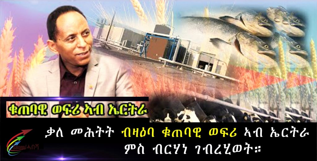 Interview Investment in Eritrea with Mr. Berhane Ghebrehiwet
