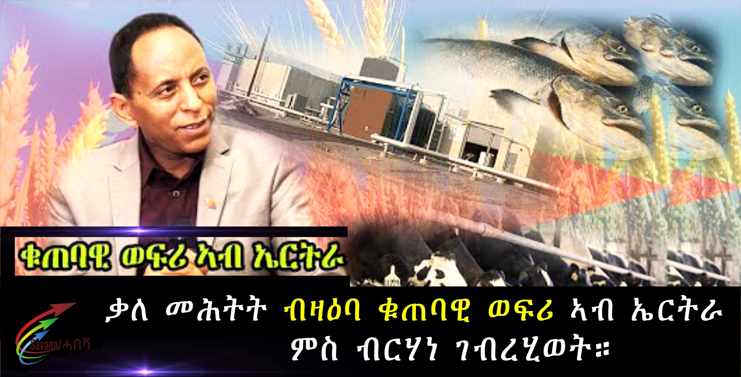 Interview-Investment-in-Eritrea-with-Mr.-Berhane-Ghebrehiwet