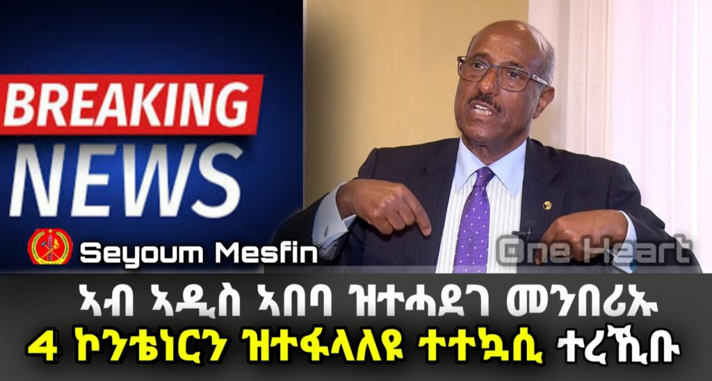Weapons found at the residence of Seyoum Mesfin
