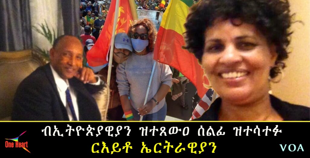 Eritreans Opinion who Participated in Ethiopian protest