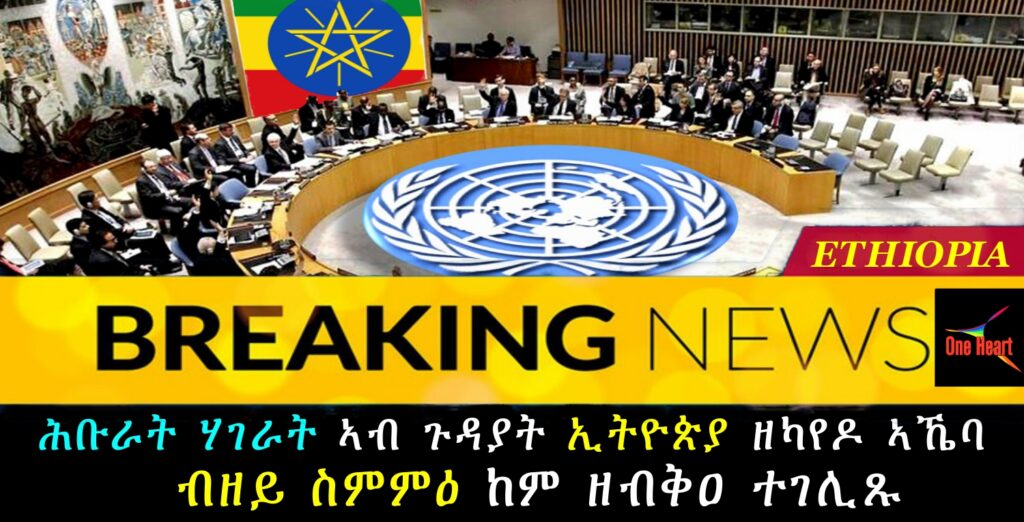 UN Security Council session on Tigray ends with no agreement, diplomats say
